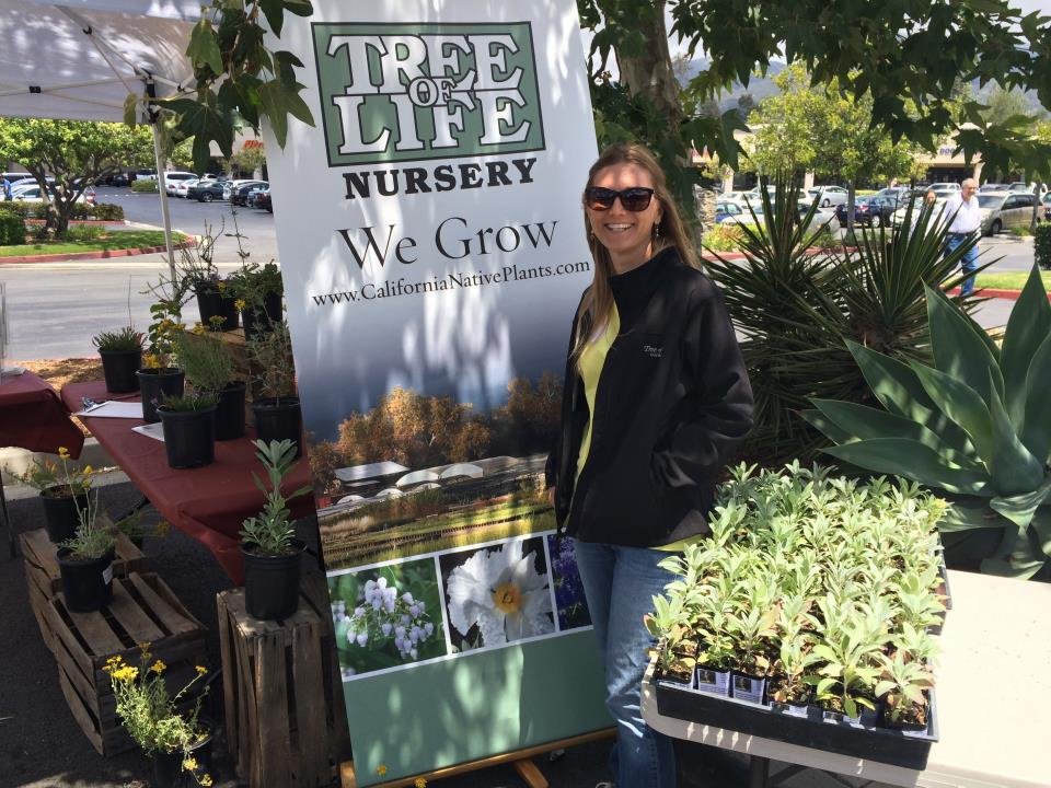 Trabuco Canyon Water District 2016 Water Awareness Day - Tree of Life